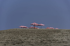 air asia (Greg M Rohan) Tags: nikon d750 nikkor 2018 blue red bali indonesia sand beach umbrella umbrellas airasia beachumbrella