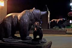 Among the Bears (MIKOFOX ⌘) Tags: summer sculpture canada landscape britishcolumbia bears july provia revelstoke xt2 xf18135mmf3556rlmoiswr fujifilmxt2 mikofox showyourexif learnfromexif