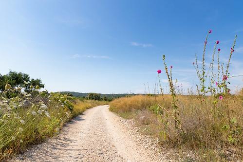Walking trail on Silba island, Croatia