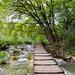 Walking trail across Korana river in Plitvice Lakes National Park, Croatia