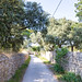 Small street on Silba island, Croatia