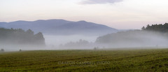 Foggy Cove Panorama, 2019.08.19 (Aaron Glenn Campbell) Tags: cadescove looptrail gsmnp smokymountains nps townsend tennessee tn morning fog mist smoke nikcollection colorefexpro softfocus glow 2xp panorama photomerge stitch sony a6000 ilce6000 mirrorless canon fdn28mmf28 wideangle primelens manualfocus fotodiox lensadapter emount