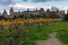 49601-Carcassonne (xiquinhosilva) Tags: 2018 carcassonne cité fortified france languedoc medieval occitanie unescoworldheritage aude