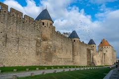 49738-Carcassonne (xiquinhosilva) Tags: 2018 carcassonne cité fortified france languedoc medieval occitanie unescoworldheritage aude