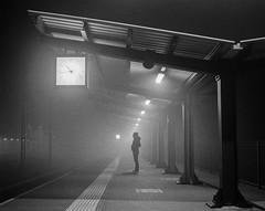 I a m a p a s s e n g e r (Zew1920) Tags: rails railway station tarnów mościce mamyia fomapan 200 rzpro2 pkp mist medium format passenger
