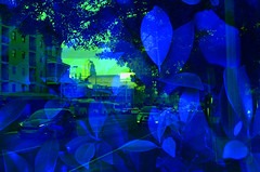 Sydney Experiment (goodfella2459) Tags: nikond7000 experimental digital doubleexposure multipleexposure filters hoyapopcolorfilters sydney city lensfiltersgroup