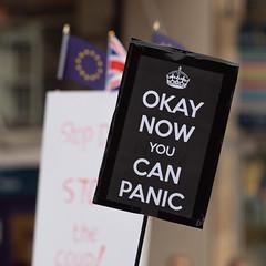 _1038086.jpg (Stephen.Bingham) Tags: bristolstopthecoupmarch events brexit politics bristol protest march demonstration prorogation bristolforeurope placard ccbysa creativecommons attributionsharealike nowyoucanpanic ok okay