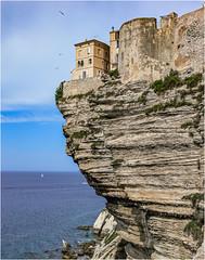 Bonifacio #62 (Clive1945) Tags: corsica corse bonifacio cliffs cliff citadel coast sea rocks oldtown
