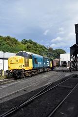 37264 (Chris Strange) Tags: nymr north yorkshire moors railway pickering grosmont whitby goathland steam train locomotive heritage preserved class 37 37264 br large logo blue diesel