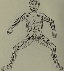 This image is taken from History and bibliography of anatomic illustration in its relation to anatomic science and the graphic arts (Medical Heritage Library, Inc.) Tags: human anatomy illustrated books gerstein toronto medicalheritagelibrary date1920 idhistorybibliogra00chouuoft