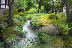 Jardins de rêves du Tenryu-ji .. Unesco site..Album du Japon (geolis06) Tags: kyoto japan garden asia jardin unesco zen 日本 asie japon unescoworldheritage zengarden tenryuji kyōto 2017 unescosite olympuspenf patrimoinemondial olympusm918mmf4056 geolis06 templetenryūji