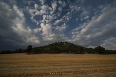 La ladera (anpegom) Tags: renedo valladolid valle rastrojo campo pinos arboles castillayleón españa spain verano