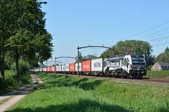 193 623, Oisterwijk, 24-08-2019 (Maarten/MHS84) Tags: rfo railforceone 193623 918061936236ddispo cabootershuttle oisterwijk brabantroute br193 vectron