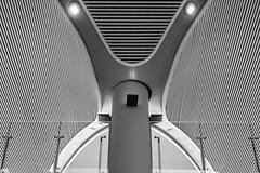 seing faces everywhere / hypnotoad is back! (Özgür Gürgey) Tags: 2019 50mm airport bw d750 futurama hypnotoad nikon pareidolia architecture geometry lines symmetry istanbul