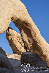 Arch Rock Joshua Tree National Park 2 (MrDiscoDucks) Tags: brenden fleming brendenfleming nikon d810 nikond810 2018 hiking hike adventure explore mrdiscoducks outdoors outdoor outside travel traveling landscape landscapes photo photography photographer nature paths sun sunny camping camp trail trails summer may 2019 joshua tree national park joshuatree nationalpark california arch rock archrock
