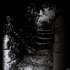 La marche était trop haute. (Un jour en France) Tags: lassassinhabiteau21 canoneos6dmarkii canonef1635mmf28liiusm carré marche escalier nuit