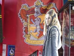 P1060936 (faithful-viewer) Tags: york yorkshire northyorkshire england york2019 yorkshire2019 england2019 uk2019 unitedkingdom greatbritain gb theshambles yorkshambles harrypotter diagonalley harrypottershop theshopthatmustnotbenamed theyboywizard wizardworld wizardingworld potions hpshop harrypotterlocations harrypotterlocation hplocations jkrowling gryffindor slytherin hufflepuff ravenclaw quidditch ukheritage historical historicalengland yorkshiremuseum yorkminster flowers romanwalls yorkcitywalls citywalls cityscape travelpics travelphotos travel travels trip trips travelphotography travelblog architecture architecturephotography englandismycity