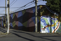 Vancouver Mural Festival (w.d.worden) Tags: anothervancouverlane vancouvermuralfestival