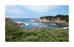 Big Sur (Joe Franklin Photography) Tags: bigsur california ca pacific hwy1 wwwjoe franklinphotographycom almostanything