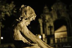 Fountain of the Fishing Children (gergely.t.springer) Tags: budapest hungary buda castle magyarország sculpture night nikon d3500 f18 50mm fountain fishingchildren károlysenyei 1912
