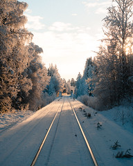(thedrowsy) Tags: sweden nature swe sverige jämtland norrland northern north photographer