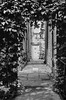 Renishaw hall, spotted this door through the garden.