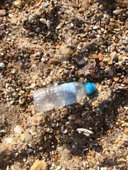 IMG_0366 (seashorty) Tags: plasticbottle litterdroppedleftabandoned