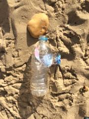 IMG_0249 (seashorty) Tags: plasticbottle litterdroppedleftabandoned