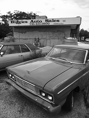 Store front - auto sales (tberard) Tags: car cars auto autos automobile automobiles automotive sales classic vintage carlot carsales autosales forsale storefront shop abandoned neglected blight rustbelt blackandwhite bnw bw parked parking cleveland clevelandohio ohio