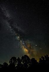 Beyond The Trees (somewheredowntheroadphoto) Tags: night light sky stars nightime milkyway galaxy starlight trees tree bright shadows shadow
