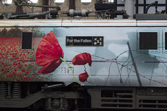 For The Fallen (DM47744) Tags: 91111 for the fallen nameplate electric train class 91