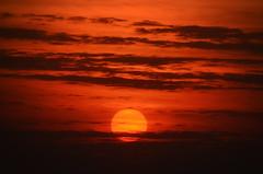 Bem brasino (Eduardo Amorim) Tags: pôrdosol poente entardecer poniente atardecer sunset tramonto sonnenuntergang coucherdesoleil crepúsculo anoitecer pelotas costadoce riograndedosul brésil brasil sudamérica südamerika suramérica américadosul southamerica amériquedusud americameridionale américadelsur americadelsud brazil eduardoamorim