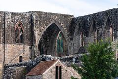 Tintern Abbey-15.jpg (Mike_Simons) Tags: tinternabbey wales