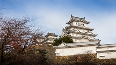 Himeji castle of Japan with blue sky (jack-sooksan) Tags: himeji hyogo japan castle history historical building ancient old famous asia asian white japanese winter blue sky travel architecture unesco wall design park tree fall exterior outdoor historic heritage beautiful tourism culture landmark