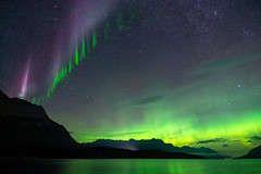 Aurora Borealis, Steve & the Picket Fence over Abraham Lake, David Thompson Country, Alberta, 2019-08-31, 12:40AM (www.clineriverphotography.com) Tags: steve night davidthompsoncountry 2019 alberta auroraborealis abrahamlake canada location clineriver light