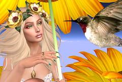 ❤ Millie Song (Aziza Style) Tags: eudorabeauty somethingnew groupgift catwa veechi {zoz} meva re avaway truth blueberry lode secondlife