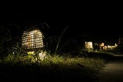 Há luz no parque 2 (j_m_m_r) Tags: haluznoparque serralves porto