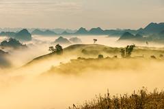_J5K9051.0110.Tân Lập.Mộc Châu.Sơn La (hoanglongphoto) Tags: asia asian vietnam northvietnam northernvietnam northwestvietnam landscape scenery vietnamlandscape vietnamscenery mocchaulandscape morning nature sunny sunnymorning morningsunshine mist earlymorningfog hill ridge ridgehill sky mountain mountains vietnamnature canon canoneos1dsmarkiii canonef70200mmf28lisusm tâybắc sơnla mộcchâu tânlập thiênnhiên phongcảnh phongcảnhmộcchâu buổisáng buổisángmộcchâu sươngmù sươngsớm nắng nắngsớm nắngsớmmộcchâu nhữngngọnđồi núi dãynúi bầutrời happyplanet asiafavorites minimalisme minimalistlandscape