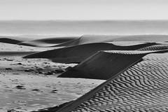 Late summer dunes at Agate Beach (Lostinplace) Tags: dune ocean surf monoto ne blackandwhite pattern fog waves sand beach newport agatebeach oregon