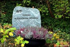 Klausjürgen Wussow (Martin_Feller) Tags: grab friedhof berlin ruhestätte tod rip ruheinfrieden waldfriedhof heerstrase ehrengrab schwarzwaldklinik wussow klausjürgenwussow schauspieler synchronsprecher