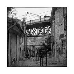 the photographer • porto, portugal • 2019 (lem's) Tags: photographer street stairs bridge photographe marches escaliers rue pont urbex ruins ruines porto portugal rolleiflex t