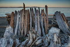 Driftwood shelter with a sunset view. (Picture-Perfect Spaces) Tags: islandviewbeachregionalpark vancouverisland britishcolumbia canada sunset beach water harostrait driftwood sand rocks driftwoodshelter seascape