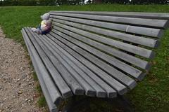long bench (veebruar) Tags: cēsis latvia trip summer bears bench