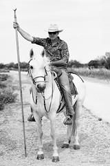 French cowboy (patoche21) Tags: animal aiguesmortes animaldomestique animaldelevage portrait france nature monochrome cheval europe noiretblanc nb dxo cavalier gard languedocroussillon faune occitanie éleveur blackandwhite bw cowboy breeding herd patrickbouchenard