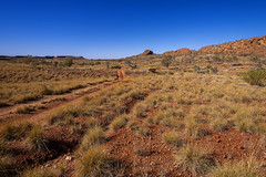 Rudall River_Little Sandy Desert_DSF0724