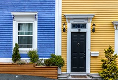 Neighbours (Karen_Chappell) Tags: house home two window door yellow blue wood wooden paint painted city urban downtown nfld newfoundland building architecture stjohns canada canonef24105mmf4lisusm black white trim clapboard green trees mailbox atlanticcanada avalonpeninsula eastcoast jellybeanrow rowhouse