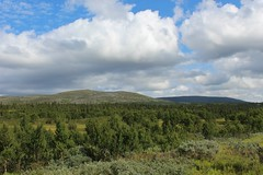 mountain (Irmzaq photography) Tags: nature naturephotography photography jämtland fjäll mountain sky clouds forest