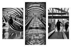 Canary Wharf Train Station Collection (paulbnashphotography (ARPS)) Tags: canary canarywharf canarywharfunderground paulbnash paulbnashphotography london londonbaby londonphoto londoncitycapital londoncity londonstreetphotography londonstreet street streetphotography streetphoto streetlife triptych triple threesome three urban urbanphotography blackandwhite blackandwhitephotography blackandwhitephoto whiteandblack whiteandblackphotography whiteandblackphoto