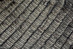 Tile Rooftops in Porto Old Town (nagyistvan8) Tags: nagyistván porto bairrodaribeira portugália portugal portuguese nagyistvan8 épület building építészet architect architecture ház house színek colors fekete fehér szürke grey folt foltozás patchiness tetőszerkezet tetőfedő roofing roof extreme special különleges szerkezet construction absztrakt abstract pattern texture alak alakzat detail részlet forma form formation fém steel cserép tile 2019 nikon