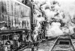 Getting Oliver Cromwell Ready (photofitzp) Tags: 70013 bw blackandwhite britanniaclass gcr grime loughborough olivercromwell railways smoke steam stealingshadows